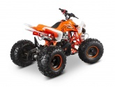 Quad Barton ATV110-9